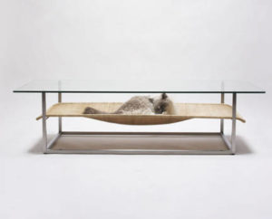 Cat Coffee Table