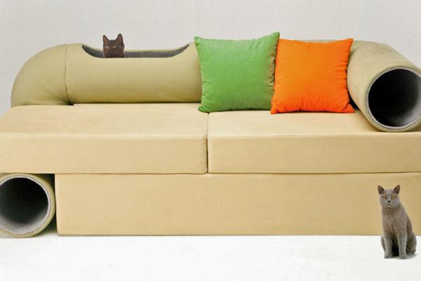 Cat tunnel sofa