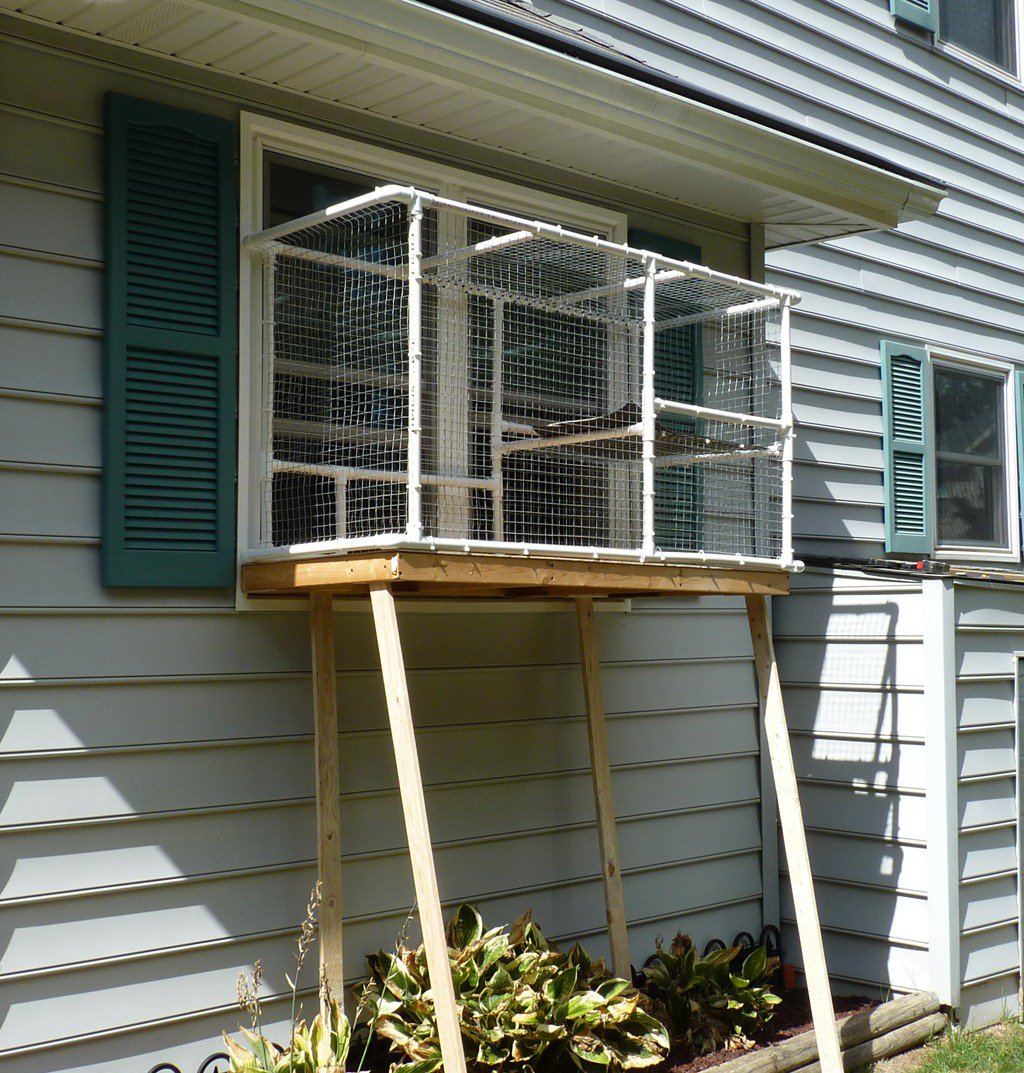 Safe Screened Porch : Safety outdoors cat enclosures cages purrfect love