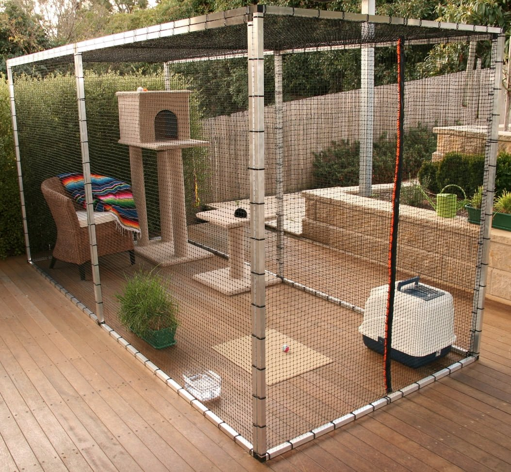 Safety Outdoors Cat Enclosures Amp Cages Purrfect Love