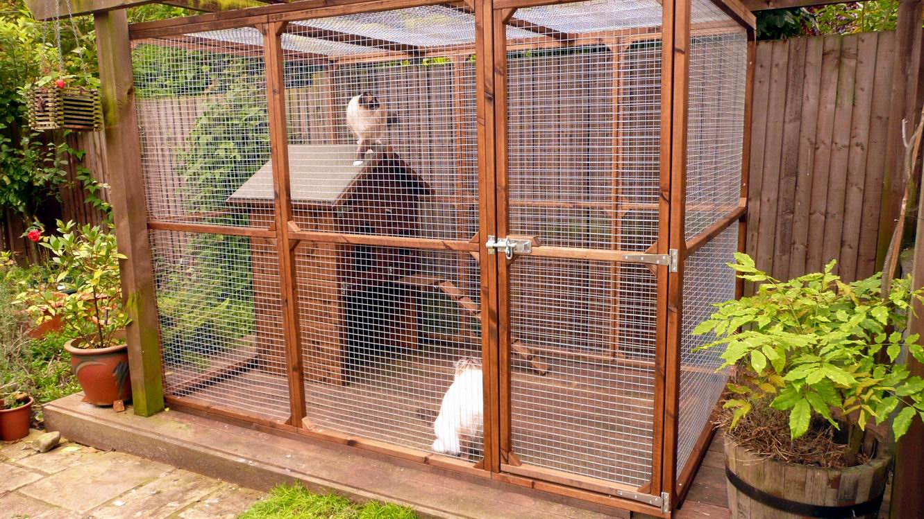 Safety Outdoors Cat Enclosures Cages Purrfect Love
