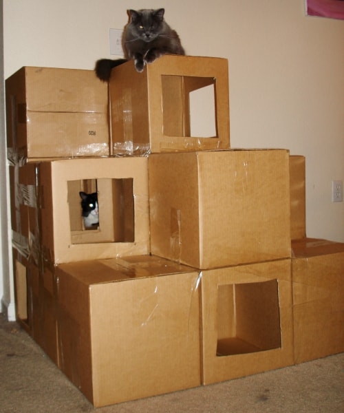 Good Diy Cardboard Box Homes And Towers For Cats Purrfect Love