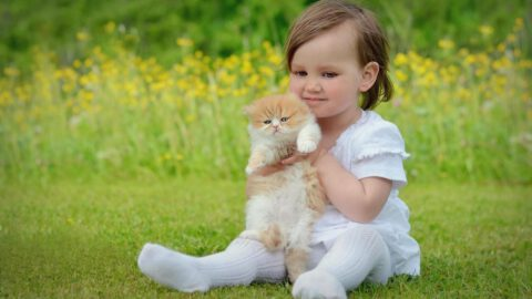 Cats Make Great First Pets for Children