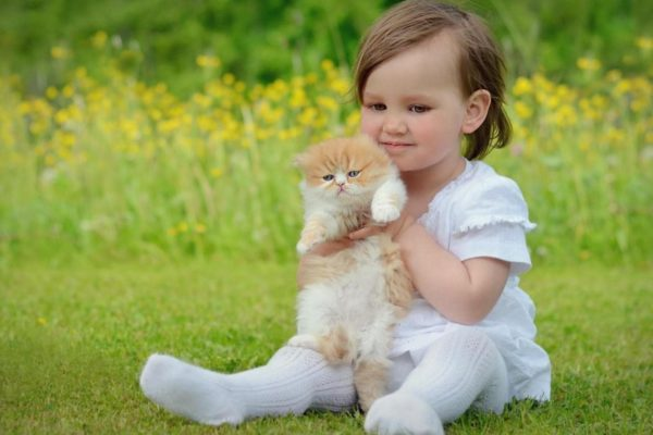 Cat with child