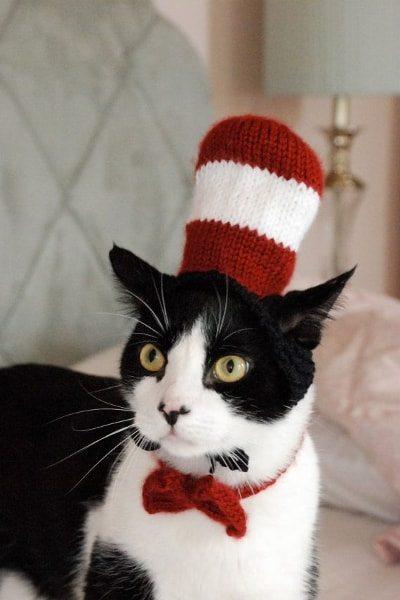Cat in the Hat Cat