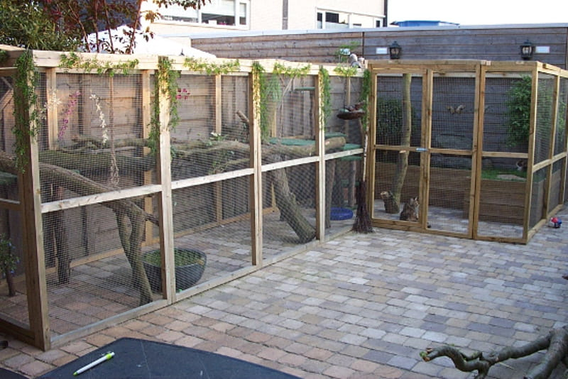 L Shape Catio
