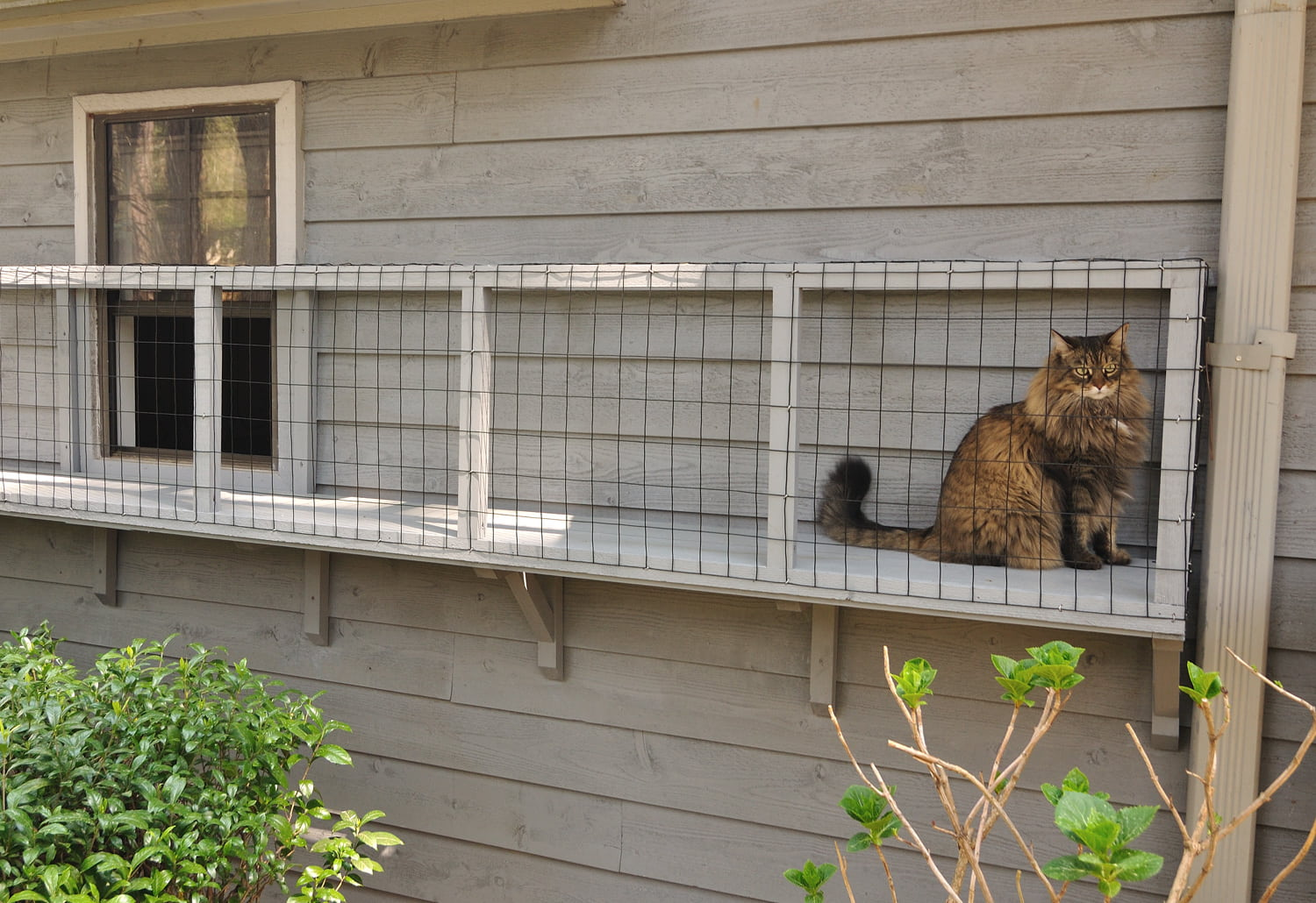 Wonderful Catio Ideas