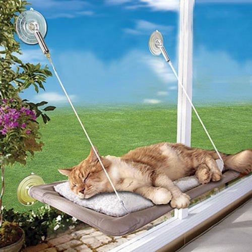 Sunny Seat Cat Bed
