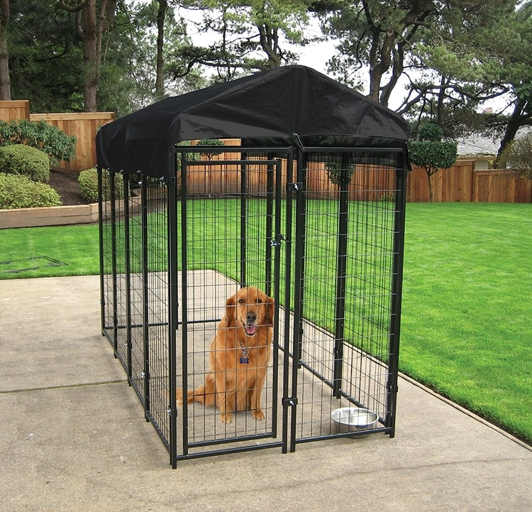 Dog Kennel for cats