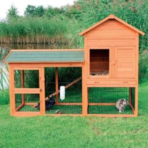 Rabbit hutch for cats