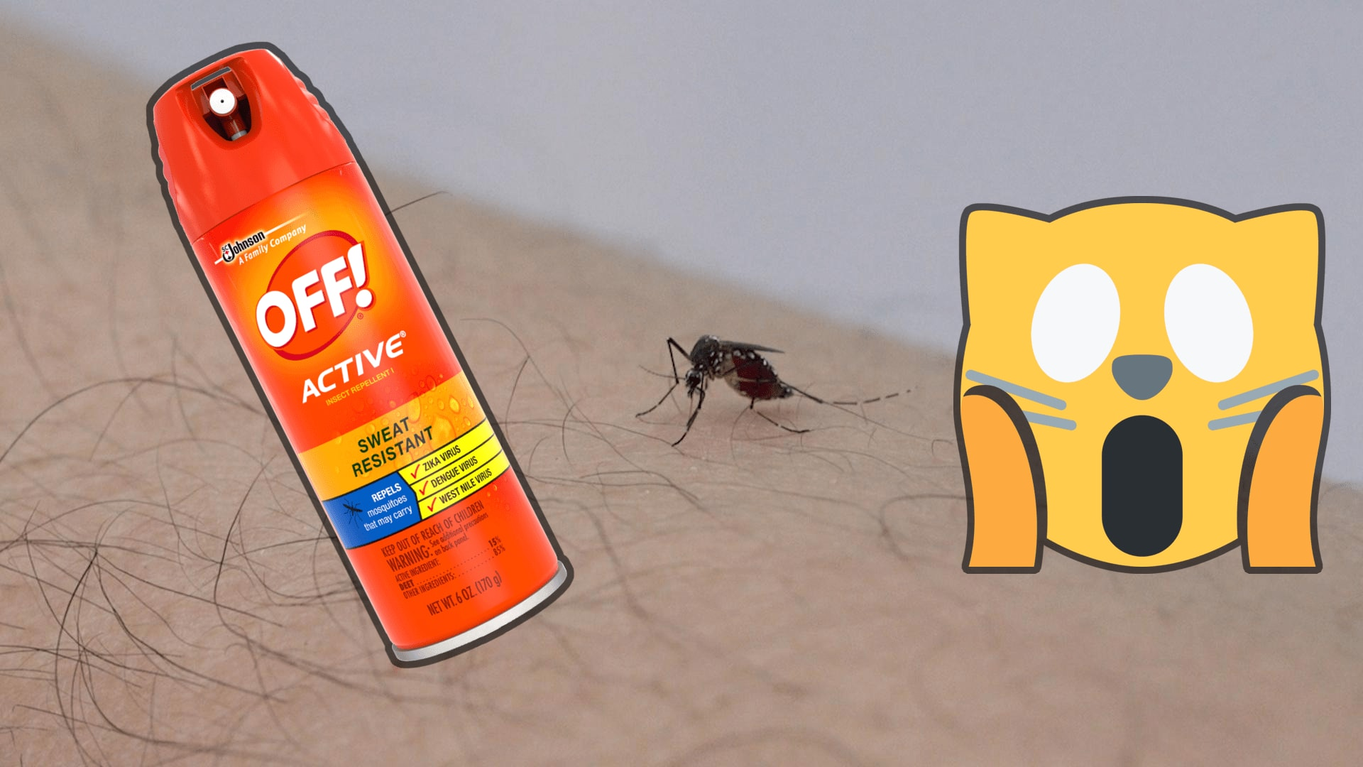 Bug Spray is Toxic to Cats