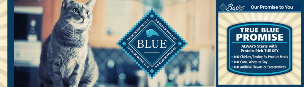 BANNER Blue Basics