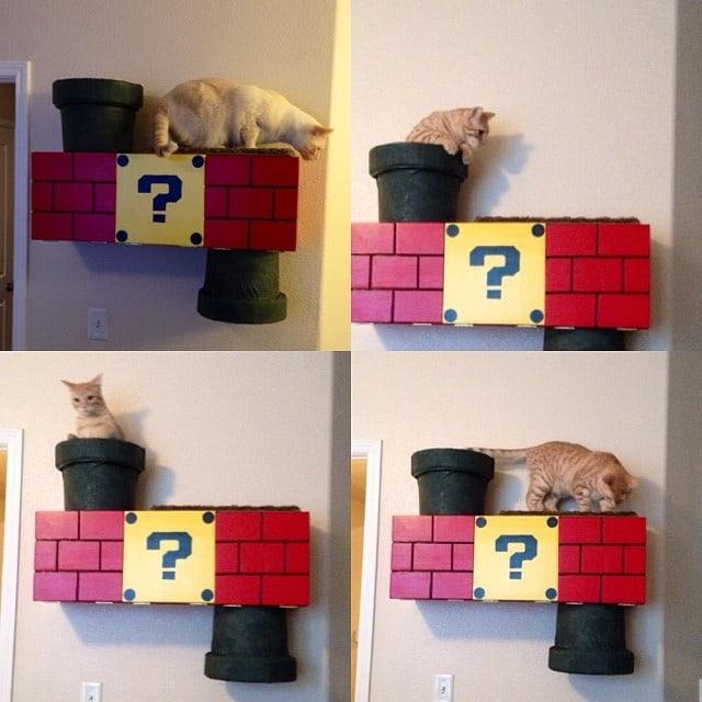 Mario Cat Perch