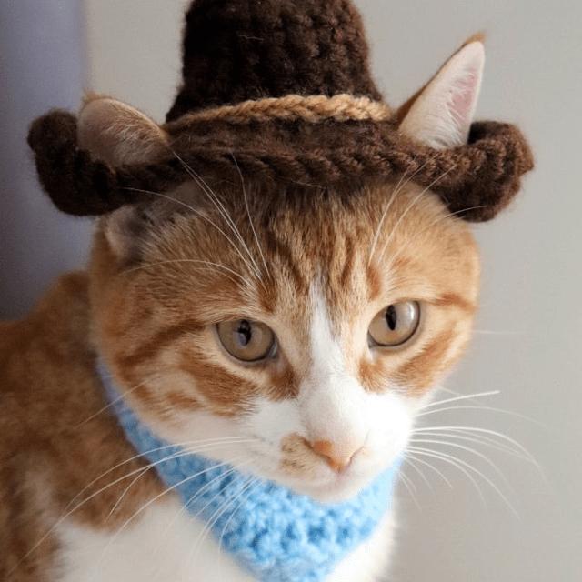 Cowboy Cat Hat