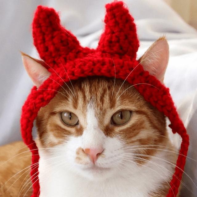 Cute Devil Horns Cat Hat