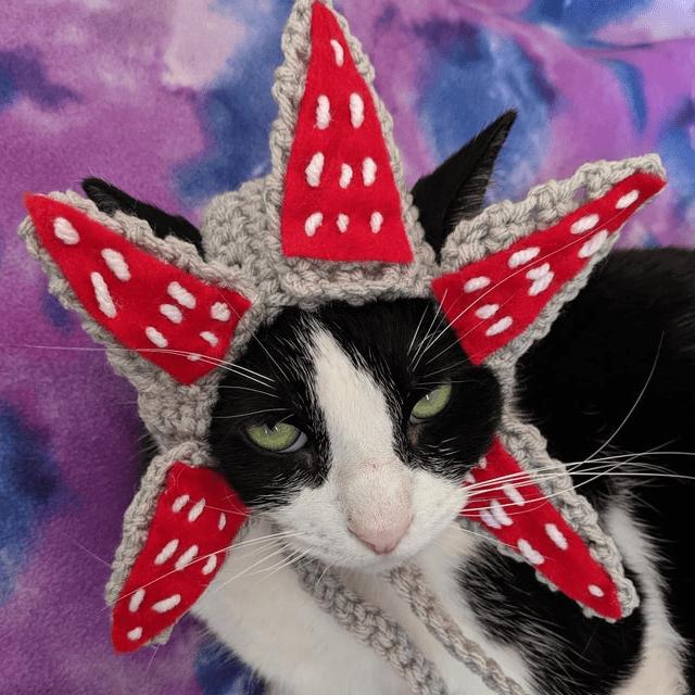 Demogorgon Cat Hat