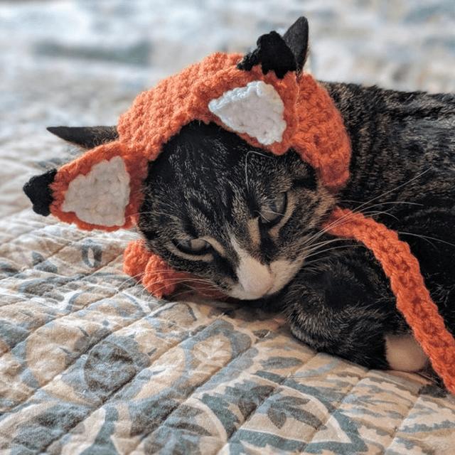 Fox Ears Cat Hat