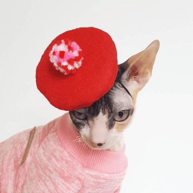 French Beret Cat Hat