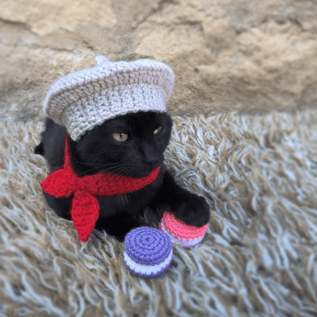 French Cat Hat