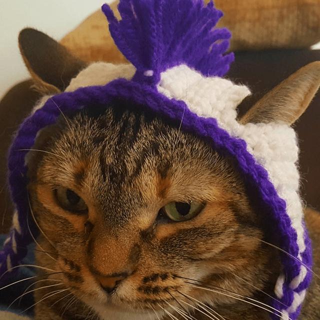 Mowhawk Cat Hat