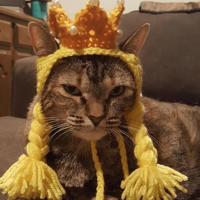 Princess Cat Hat