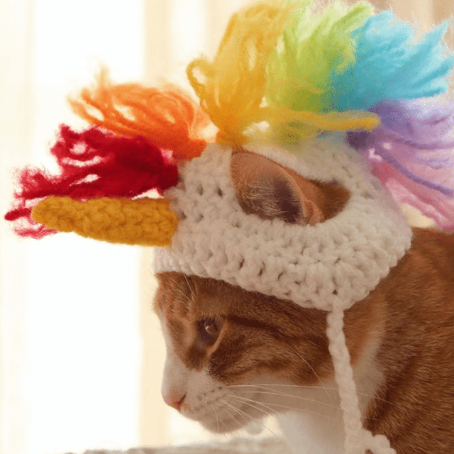 Rainbow Unicorn Cat Hat