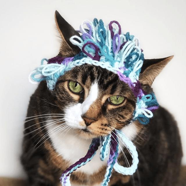 Silly Bonnet Cat Hat