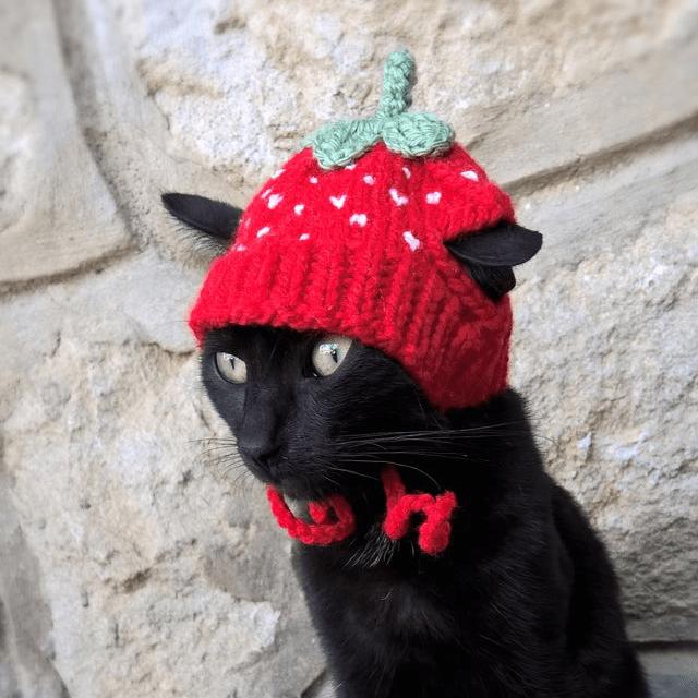 Strawberry Cat Hat