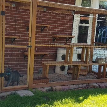 Simple Wood Catio
