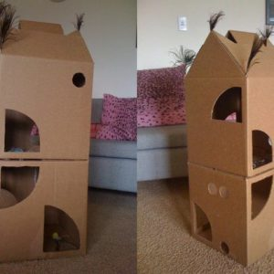 Peekaboo cardboard house